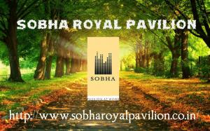 Apartments For Sale In Sarjapura Road Bangalore