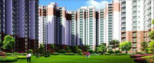 Live Healthy At Nirala Greenshire Noida Extension 9266850850